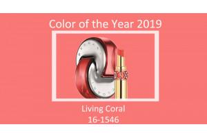 Buďte trendy a používajte farbu roka 2019: nádhernú koralovú!